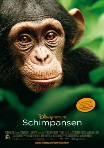 Filmplakat Schimpansen