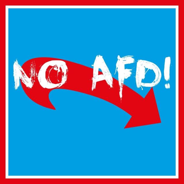 Antifaschistische Kundgebung gegen den AfD Parteitag in Hamburg am 10. Februar
